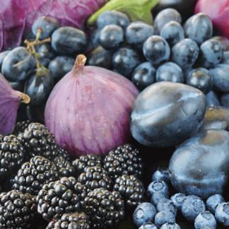Blu e Viola, <br> i colori del benessere.